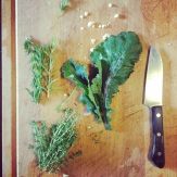 cooking fresh greens